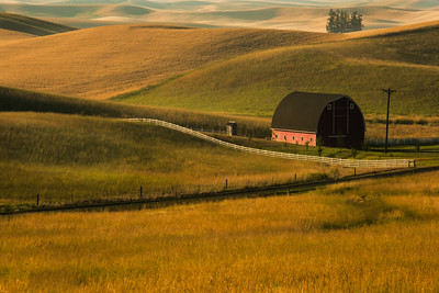 Palouse, Washington State, US -3873