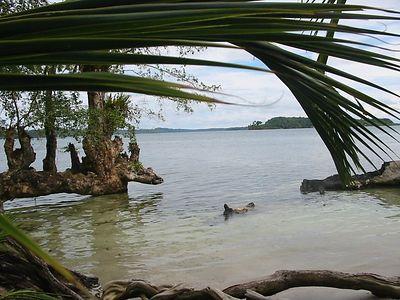 Bocas Area