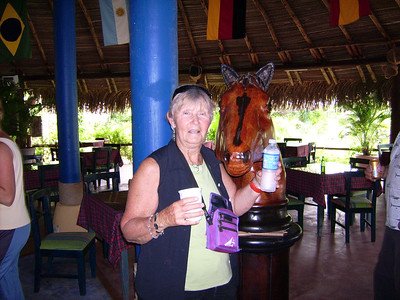 The rest stop is decorated with carved horse heads, which seem to attract the women in our group