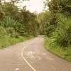 Achiote Road