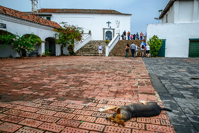 Candelaria convent.  Lazy dog in foreground.