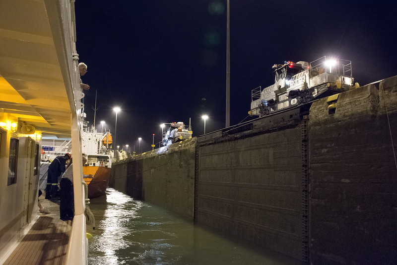 Mules keep the ships from hitting the sides of the canal...