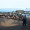Caletas Reserve: Horse riders departing, Steve videoing, Sea Lion in distance