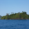 Isla Coiba: Island with palms on ridge