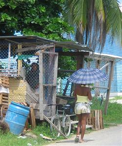 Bocas billen. Panama.