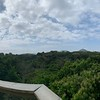 Panorama from top of Canopy Tower