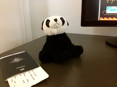 Panda hanging inside the airport waiting to board again with passport and ticket