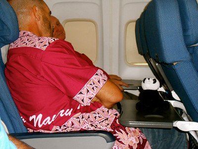 Panda just chilling on the flight home via Vanuatu with Peter and Darryl shhhh he needs beauty sleep.