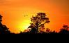 Sunset just after entering Pantanal