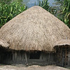 The Dani tribe has occupied the Baliem Valley for 25,000 years.
