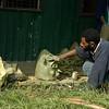 20030817_Papua New Guinea_190