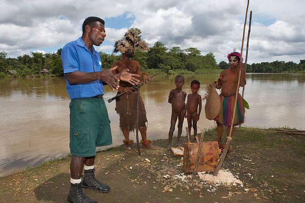 Sago-making demonstration.  Man removes bark from sago palm..
