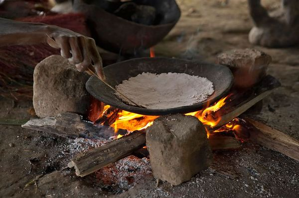 Sago-making demonstration. Sago flour is used to make pancakes