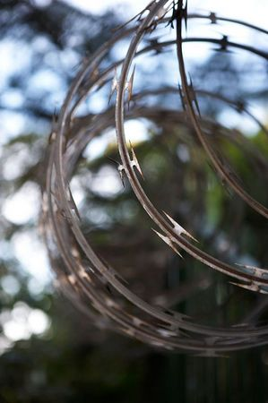 Razor wire -- a staple in Papua New Guinea