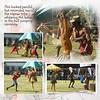 Day 12 T0 Warwagira Festival