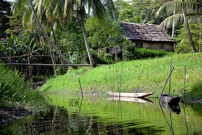 The village where we had our home-stay on the Sepik