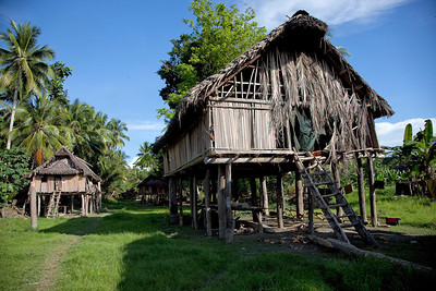 Another Sepik River village