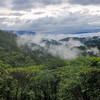 """Tabubil, Western Province, is known as """"Cloudlands"""" because of the constant low-hanging clouds"""