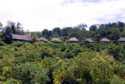 lodge view from the sepik