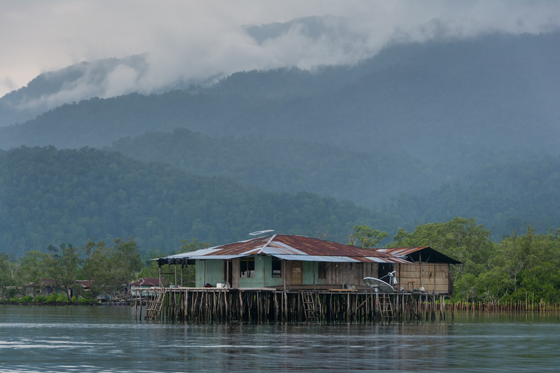 A typical house, with mangroves planted out back, in the early morning after a night of rain, in Randawaya Village in Ampimoi Bay, an Ambai language village on Yapen Island, Papua, Indonesia. [Papua Warironi 2015-10 56 YapenIs-Indonesia]