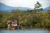 An Ambai house built among the mangroves, with its own little restoration plot too. Menawi Village, Yapen Island, Papua, 2006. [Papua Menawi 2006-11 001 YapenIs-Indonesia]