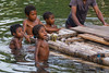 Children playing in the river at Warironi Village, Papua, Indonesia, October 2015. [Papua Warironi 2015-10 23 YapenIs-Indonesia]