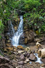 A little waterfall in the rainforest of the Vogelkop (Birds Head) mountains near Testega,  November 2015.  [Papua Manokwari 2015-11 093 Indonesia_TC]