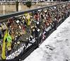 Locks near Notre Dame