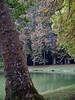 Grounds- Fontainbleau