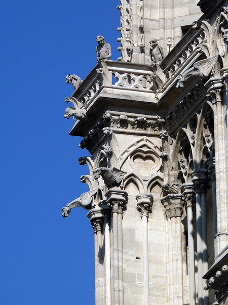 Gargoyles- Notre Dame