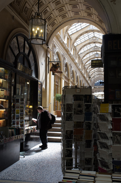 The Galeries in Paris date from the early 1800s, and are covered passages that protected shoppers from the weather, and were in essence the first shopping malls. Many still exist, such as this Galerie Vivienne.