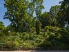 Parc Monseau