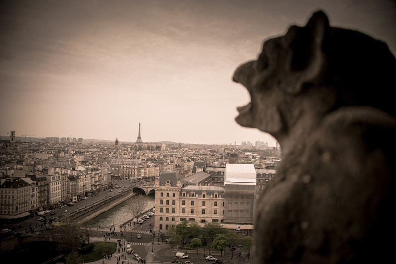 Perfect Paris View