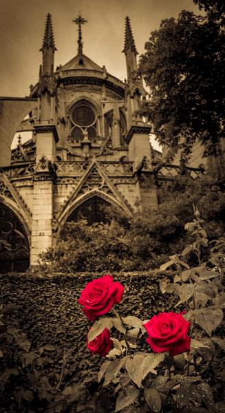 Paris_SL-1069-Edit