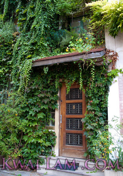 Beautiful door with greenery: imagine coming home to this! Also Rue de Glycines, Paris.