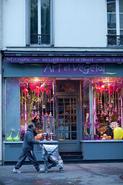 Art et Vegetal #2, Rue Bobiot.