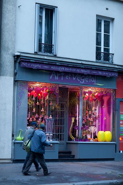 Art et Vegetal #3, Rue Bobiot.