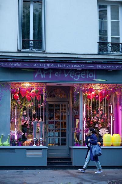 Art et Vegetal #1, Rue Bobiot.