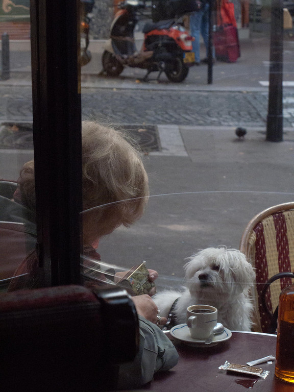 A classic classy French lady and her poodle. She was, of course, smoking.