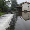 Mill Pond, Montagrier, France