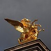 The gilded Pegasus on the Pont Alexander III