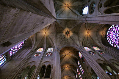 It is a long way up to the gothic ceiling inside Notre Dame-100 feet to be exact.