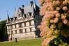 Loire, Chateau d'Azay le Rideau-10