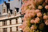 Loire, Chateau d'Azay le Rideau-9