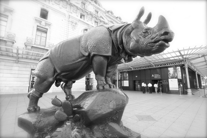 The rhino (a male) poses outside the Musee D'Orsay.