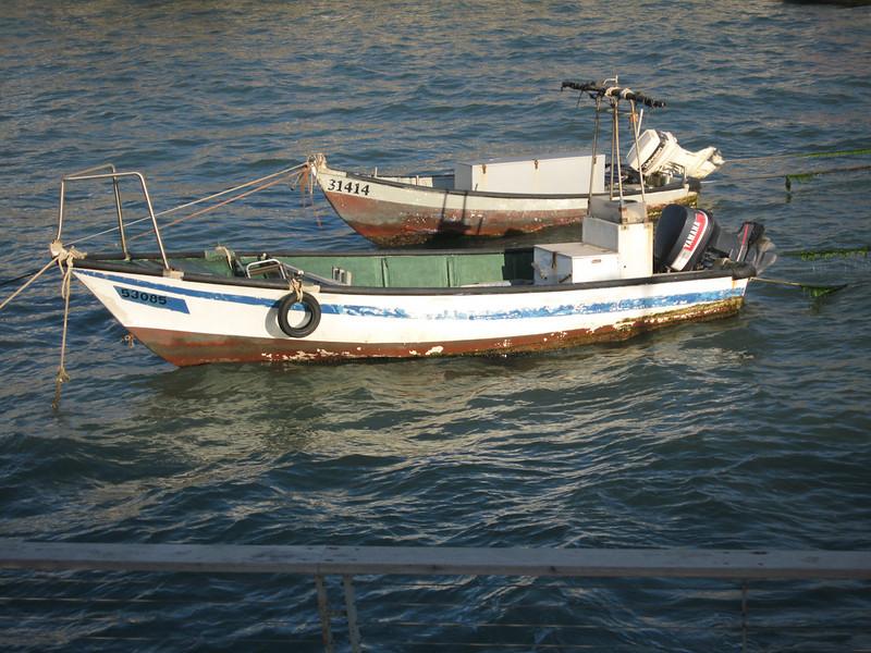 Haifa 2011 049