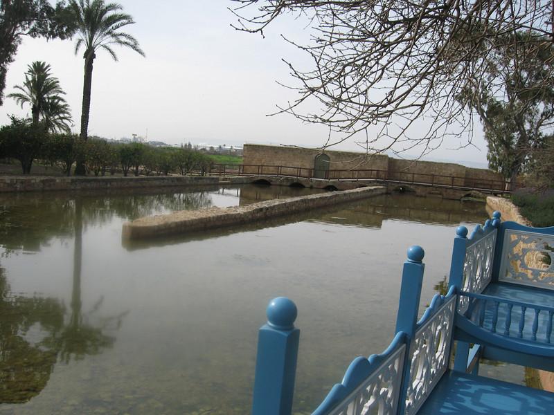 Haifa 2011 264