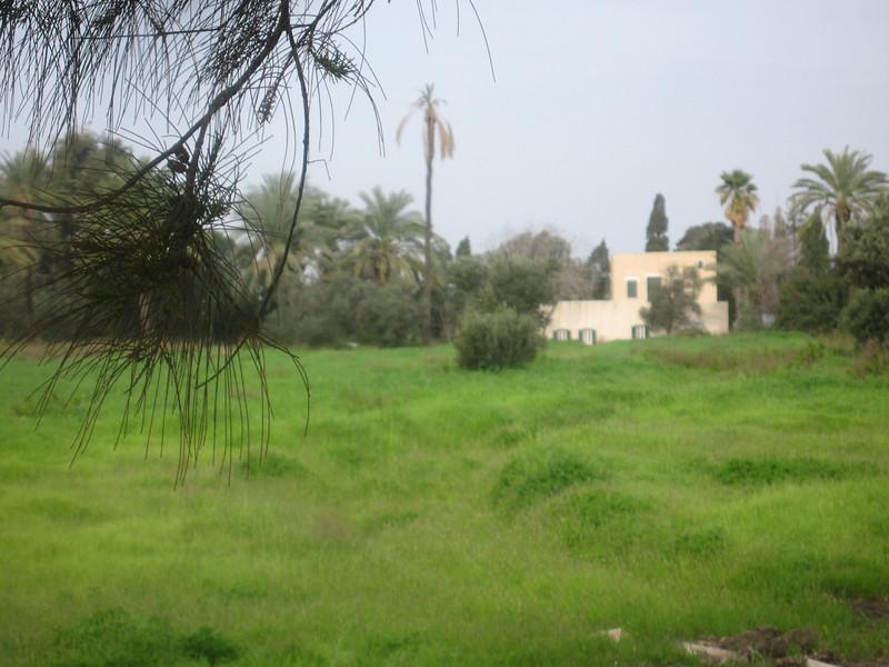 Haifa 2011 250
