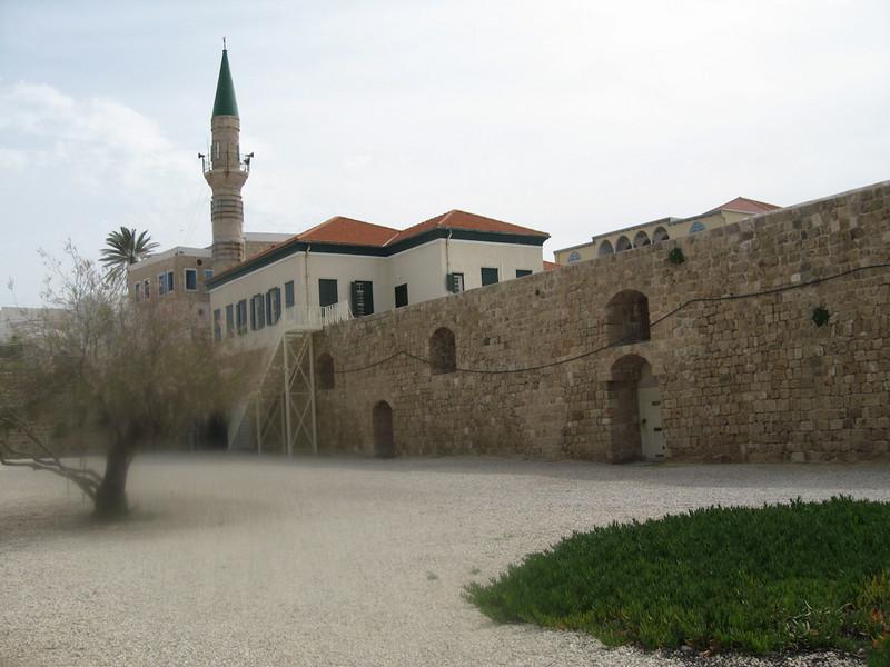Haifa 2011 275