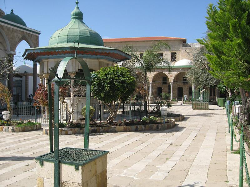 Haifa 2011 223